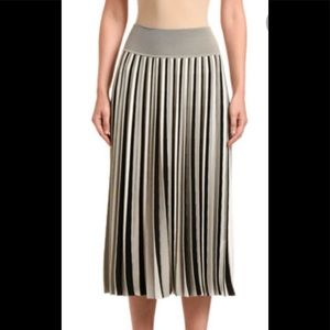 Dresses & Skirts - Ombré Pleated Skirt